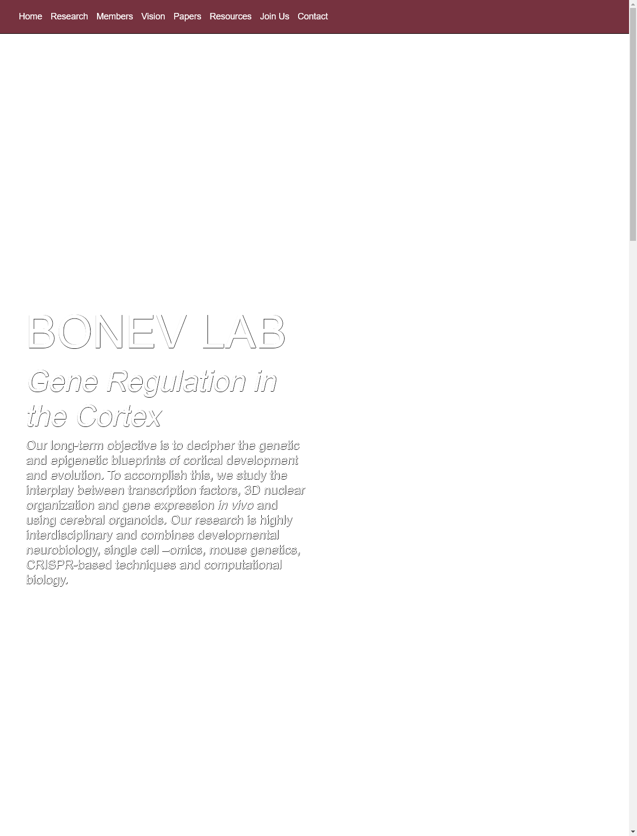 Screenshot Desktop - https://bonevlab.com/
