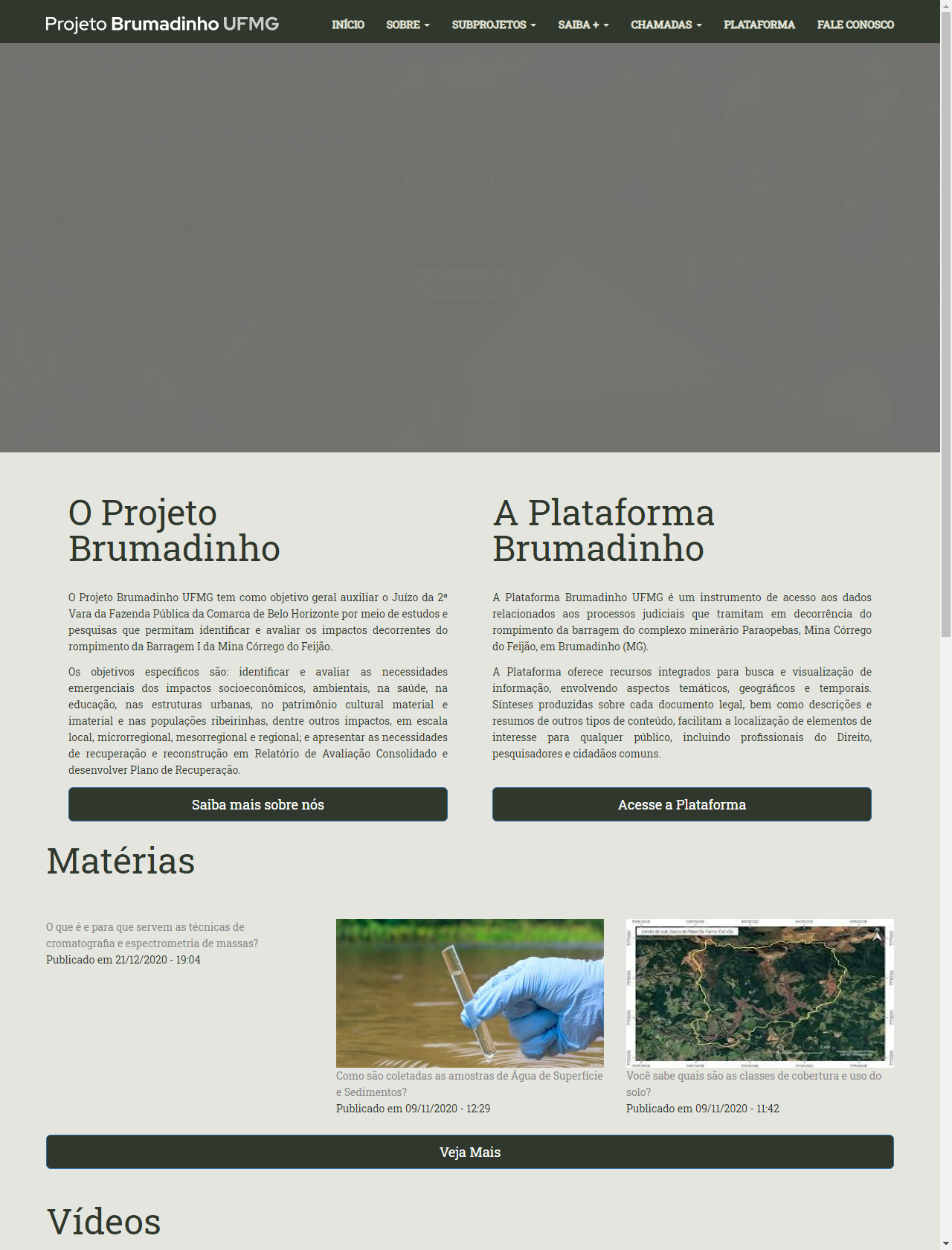 Screenshot Desktop - https://dev.projetobrumadinho.ufmg.br/