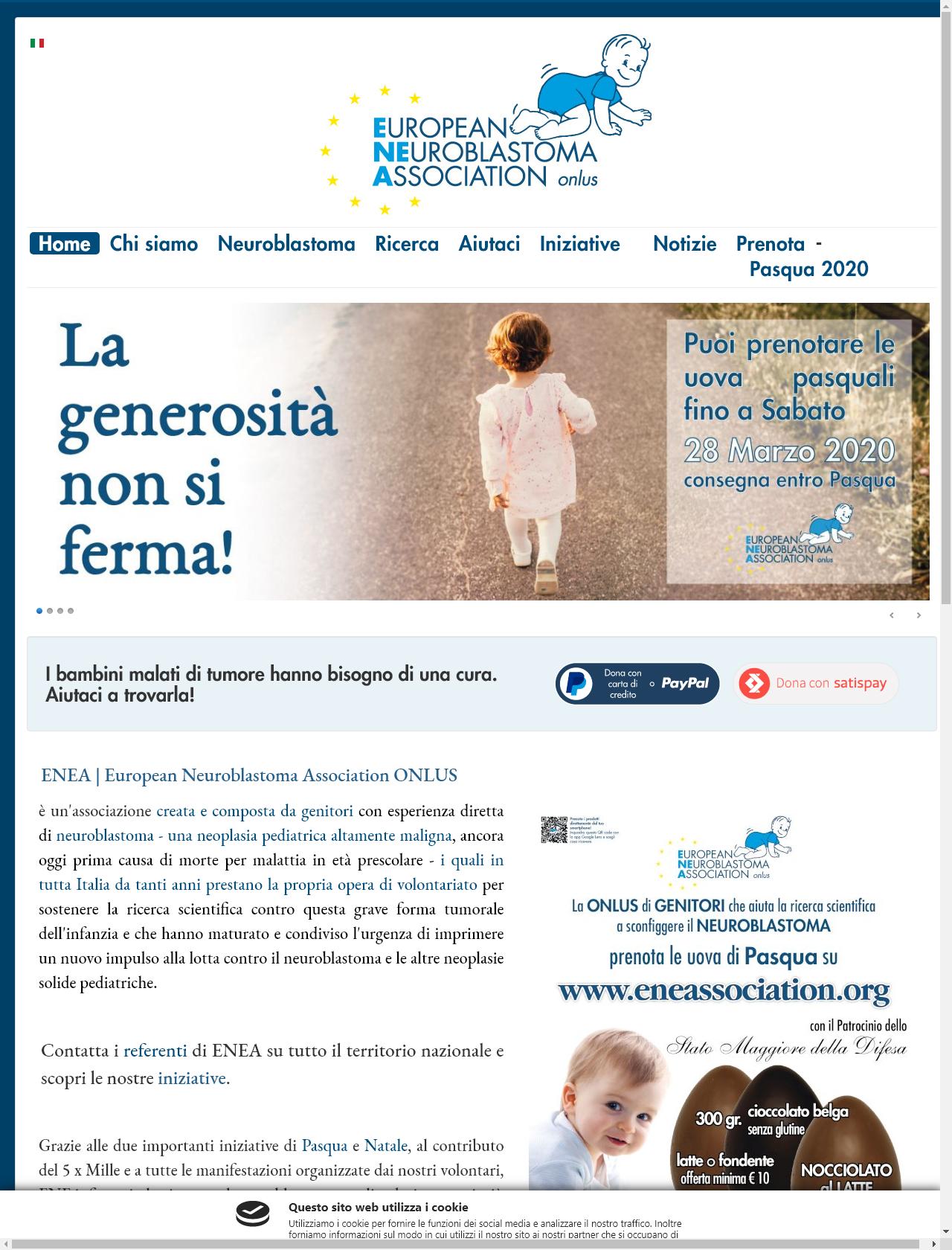 Screenshot Desktop - https://www.eneassociation.org/