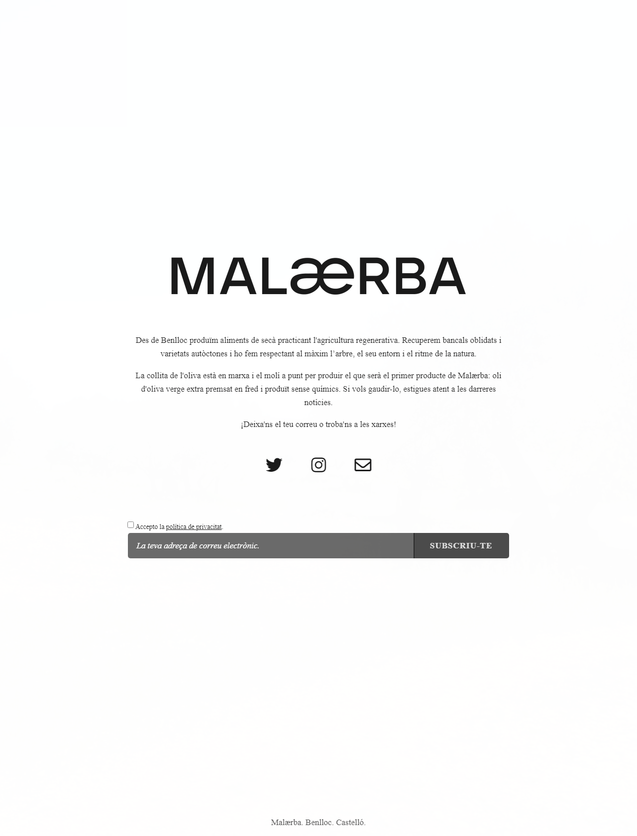 Screenshot Desktop - https://malaerba.com/
