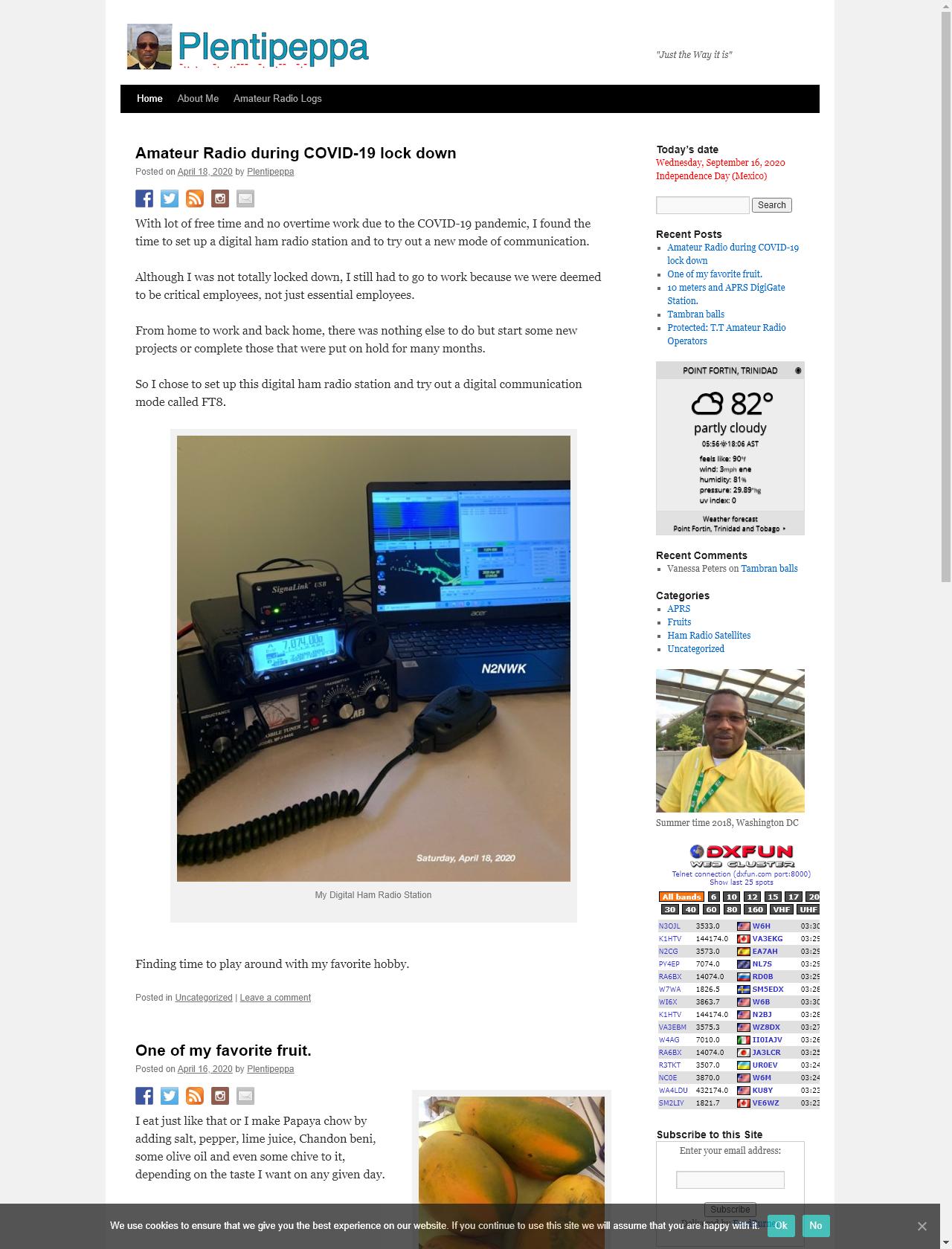 Screenshot Desktop - https://www.plentipeppa.com/