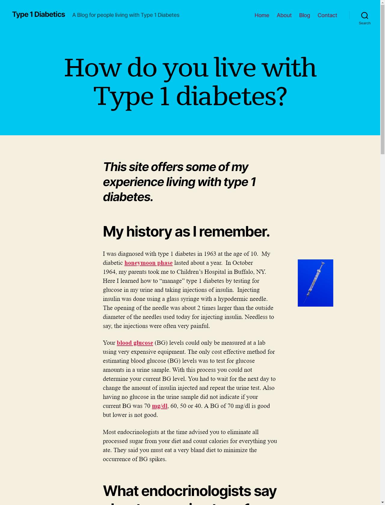 Screenshot Desktop - https://www.type1diabetics.org/