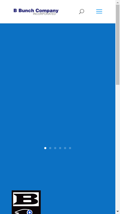 Screenshot mobile - https://bbunch.com/