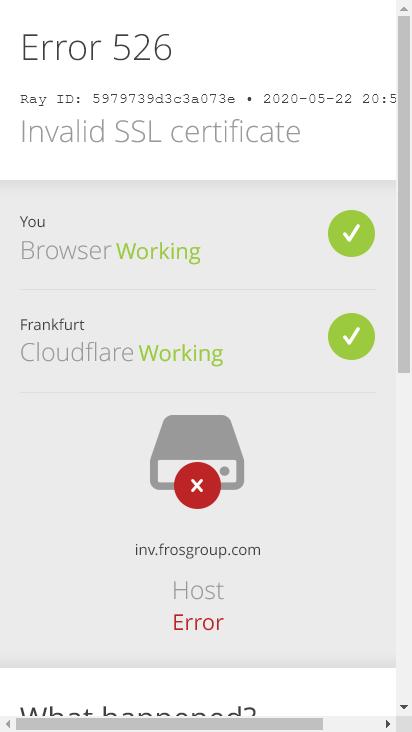 Screenshot mobile - https://inv.frosgroup.com/