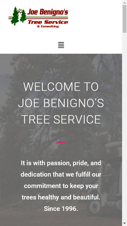 Screenshot mobile - https://www.joebenignos.com/