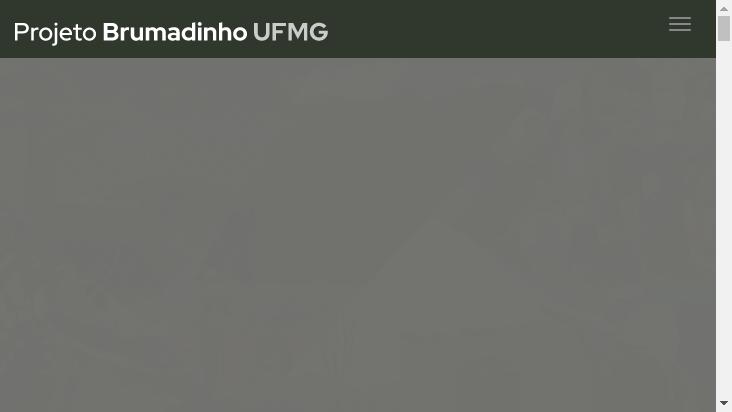 Screenshot mobile landscape - https://dev.projetobrumadinho.ufmg.br/