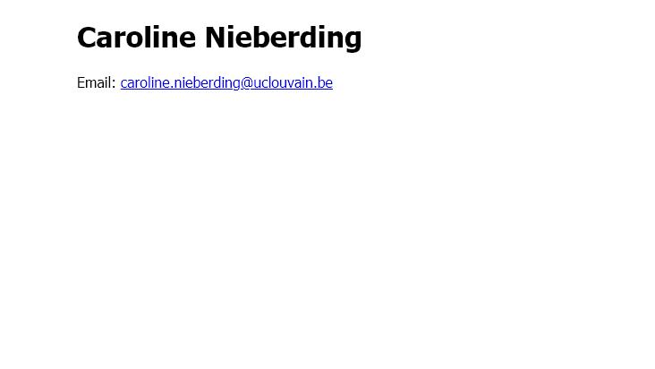 Screenshot mobile landscape - https://nieberdinglab.be/