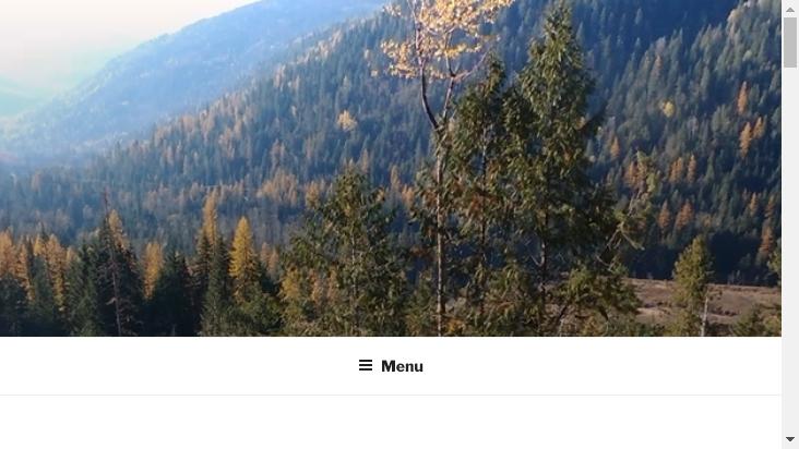 Screenshot mobile landscape - https://palden.space/