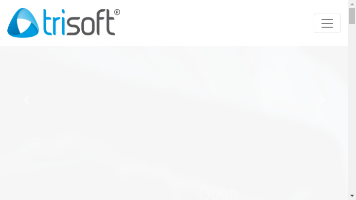 Screenshot mobile landscape - https://www.trisoft.com.pl/