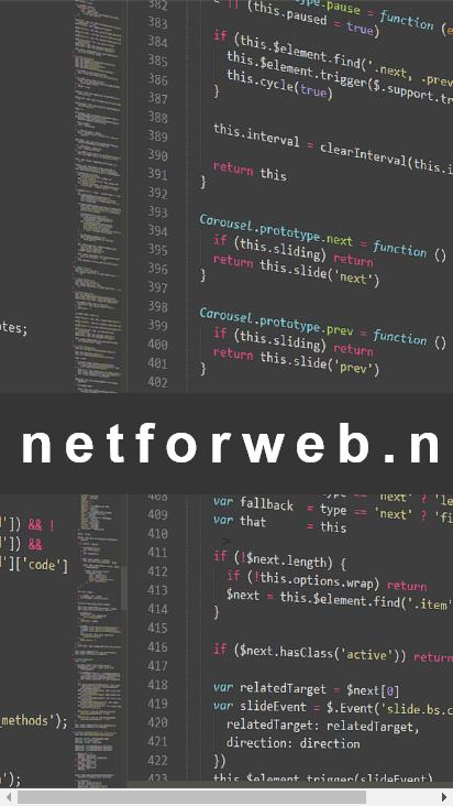 Screenshot mobile - https://netforweb.net/
