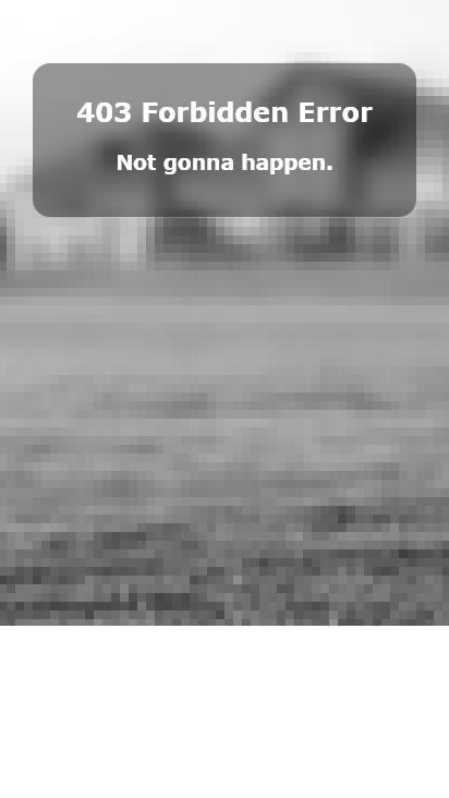 Screenshot mobile - https://timderks.duckdns.org/