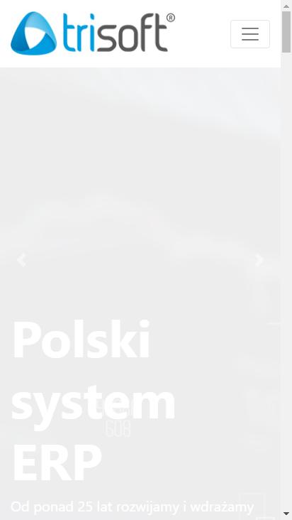 Screenshot mobile - https://www.trisoft.com.pl/